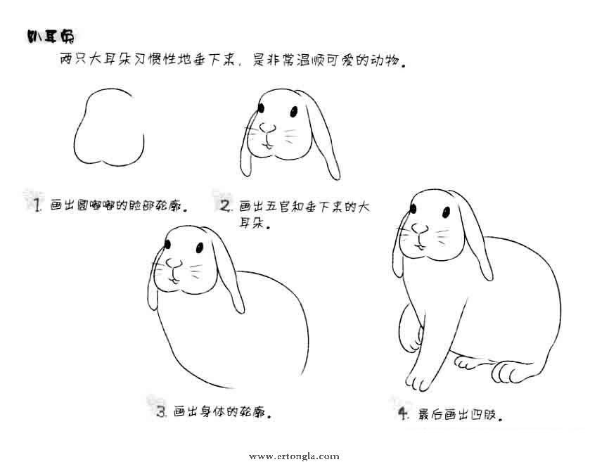 """之""""简笔画大白兔图片"""",大白兔简笔画怎么画?学习简笔画怎么画大白兔步骤分解,由简单到复杂,怎么画卡通大白兔?下面我们就一起来学习画一画大白兔简笔画吧! 幼儿简笔画,是通过生活中常见的人物、动物、植物等常见实物入手,目识、心记、手写等活动,提取客观形象最典型、最突出的主要特点,以平面化、程式化的形式和简洁大方的笔法,表现出既有概括性又有可识性和示意性的绘画。"""