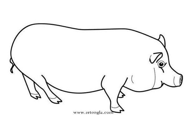 双鱼座简笔画怎么画 双鱼座的画法儿童画
