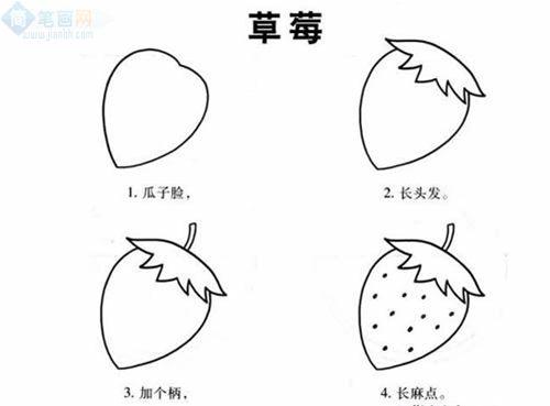 水果植物简笔画步骤