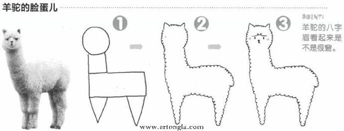 羊驼简笔画怎么画