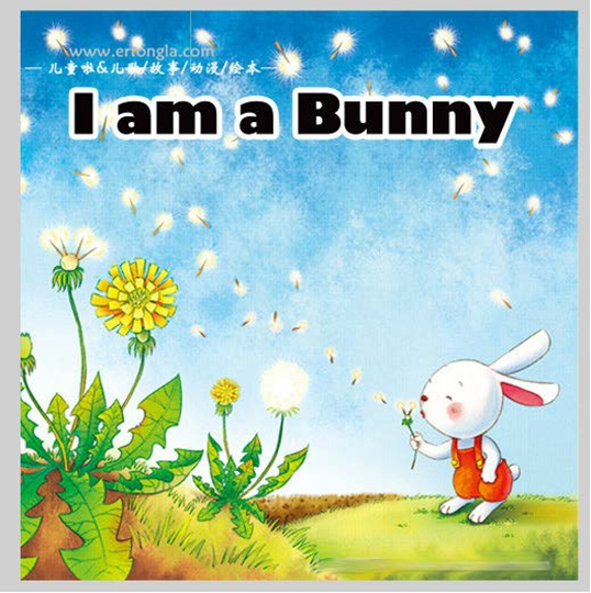 I am a bunny 我是一只兔子