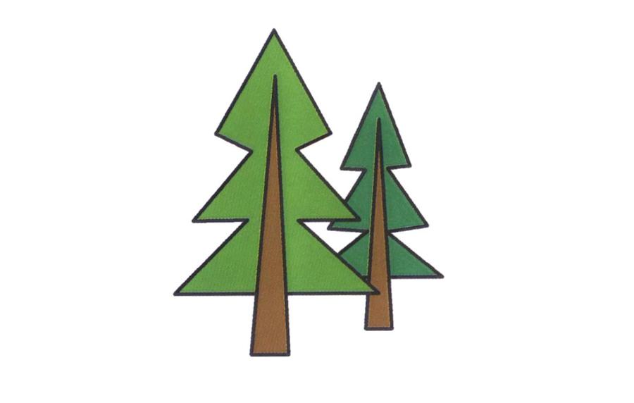 松树,松树简笔画怎么画