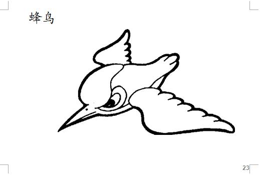 50个动物简笔画打包下载ppt绘本下载