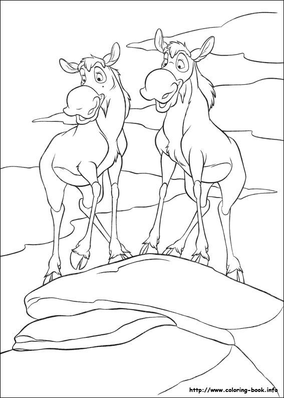 简笔画 动物简笔画 > 儿童画黑白填色画图片大全